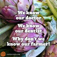 Food for thought! Do you know your local organic farmer? #food #farming #agriculture #humanhealth #health #cleanliving www.cornucopia.org