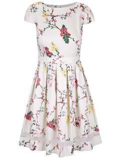 7a1571e38039 Krémové květinové šaty s pruhledným pruhem Dorothy Perkins