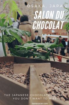 When you think of amazing chocolate, does Japan come to mind? It should. Japan is one of the world's foremost chocolate innovators, and their annual Salon du Chocolat is just one of the main events. | #japan #travel #chocolate #salon #du #chocolat #osaka #kansia #kyoto #cacao #cocoa #asia #festival #french #japanese #fair #craft #fine #food #foodie #tasting #chocolatier #maker