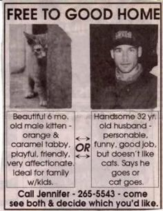 I think I'd pick the cat.  A guy I dated once tried to make me pick him or my animals. You notice the PAST TENSE on dated?