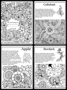 herbs coloring pages - photo#35