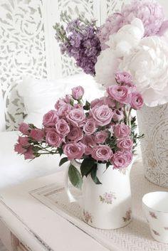 flowers.quenalbertini: Beautiful roses | Ana Rosa