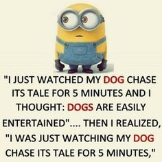35 Hilarious Minions Memes #Memes #Minion #Jokes