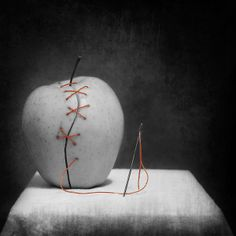 Still-life-photography-black-and-white-with-color-08_2