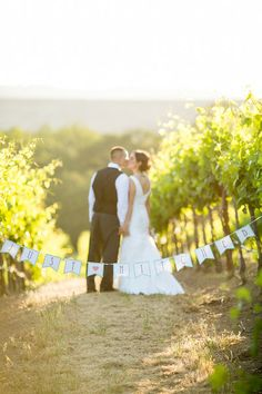 Absolutely beautiful! Sometimes you just can't beat a California vineyard photo opp! {Sbragia Family Vineyards}