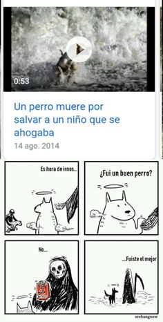 52 ideas for memes sad de perros Memes Funny Faces, Kid Memes, Memes Humor, I Love Dogs, Cute Dogs, Animals And Pets, Cute Animals, Pocket Beagle, Boyfriend Humor