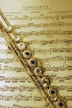 A beautiful flute. (aaand I've played that concerto... cool!!)