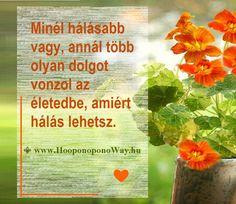 Hálát adok a mai napért. Minél hálásabb vagy, annál több olyan dolgot vonzol az életedbe, amiért hálás lehetsz. Hamar belátod, hogy az Univerzum tökéletes, és rend uralkodik benne. A hála nem kerül semmibe, mégis hatványozott jutalommal viszonozza a belé vetett hited: a szíved békéjével. Így szeretlek, Élet!  ⚜ Ho'oponoponoWay Magyarország ⚜ www.HooponoponoWay.hu