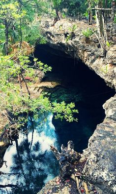 Cenotes in the middle of the mexican jungle. Not only fun for divers. Snorkelers and swimmers are welcome too. #WhiteLineDivers #wld #caverndiving #cavediving #diving #scuba #sidemount #mexico #rivieramaya #swissdiver #playadelcarmen #courses #vip #training