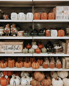 Fall 2018 Michaels store fall decor pumpkins home decor - Seasons - Halloween Michaels Store, Fall Inspiration, Autumn Aesthetic, Autumn Cozy, Hello Autumn, Fall Home Decor, Autumn Home Decorations, Thanksgiving Decorations, Happy Fall