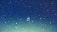 Deep-Sea Dump: ROVs Expose Trashed Ocean Floor. This chair looks like it escaped from a classroom and plunged into the Monterey Canyon, where it now sits, nearly 10,500 feet down.