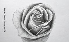 How to Draw a Rose With Pencil  #art #drawing #FineArtTips #rose #flowers #artistleonardo #LeonardoPereznieto #tutorial #Tutto3  Take a look to my book here: http://www.artistleonardo.com/#!ebooks-english/cswd