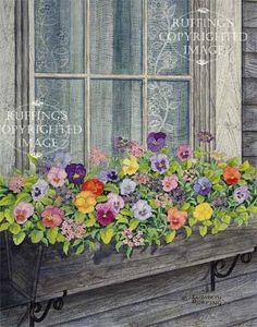 window box pansies