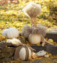 Pretty Pumpkin Display:   Create an all-white display by grouping elegant white pumpkins. Hollow some out to fill with fountaingrass and wrap others with burlap strips for a chic, natural outdoor scene.