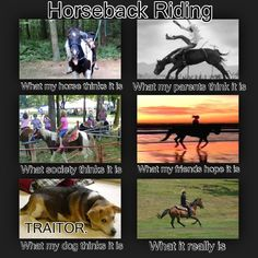Horseback Riding interpretations. (Minus the what my parents think it is...)