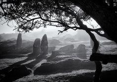 Dartmoor, dawn