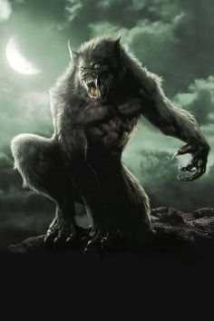 Werewolf - A human that turns into a human-like wolf during a full moon, who stands on their two legs but looks and behaves as a wolf. The werewolf loses any remembrance of their human identity upon transformation, usually going on a deadly rampage Mythological Creatures, Fantasy Creatures, Mythical Creatures, Van Helsing Werewolf, Wolf Hybrid, Werewolf Art, Werewolf Mythology, Werewolf Tattoo, Alpha Werewolf