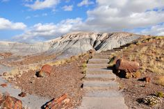 Video of Petrified Forest N.P. logs http://hikeswithtykes.blogspot.com/2015/07/video-of-petrified-forest-np-logs.html
