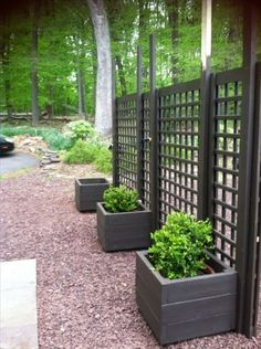 Enjoy your relaxing moment in your backyard, with these remarkable garden screening ideas. Garden screening would make your backyard to be comfortable because you'll get more privacy. Cheap Privacy Fence, Privacy Fence Designs, Privacy Screen Outdoor, Backyard Privacy, Backyard Landscaping, Privacy Screens, Backyard Ideas, Landscaping Ideas, Stone Landscaping