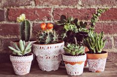 Lace Flowers Pots by A Beautiful Mess Suculentas Interior, Suculentas Diy, Cactus E Suculentas, Easy Craft Projects, Project Ideas, Craft Ideas, Diy Ideas, Upcycling Projects, Decor Ideas