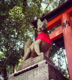 Kyoto protector,Japan. 日本 ญี่ปุ่น