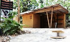 Phnom Tamao Wildlife Rescue Centre - Pictures