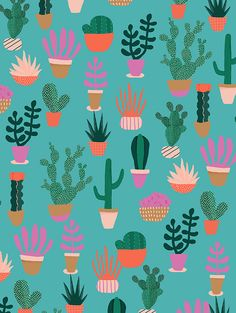 pattern | cactus illustration - Naomi Wilkinson