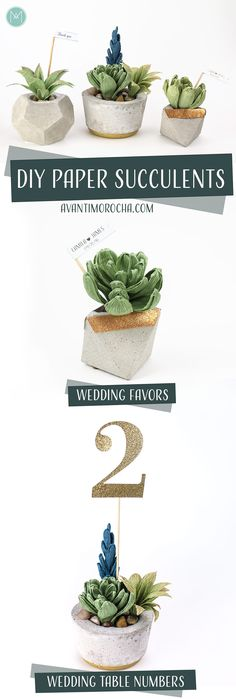 DIY Paper Succulents – Wedding Favors - Wedding Table Numbers - Carte Fini