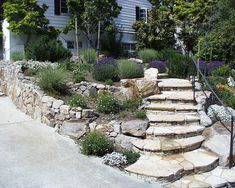 Terracing and stone walls of East Bay landscape architect Chris Hect. Landscape Stairs, Landscape Bricks, Landscaping Plants, Outdoor Landscaping, Landscaping Design, Yard Stones, Australian Native Garden, Backyard Plan, Landscaping Software