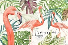 Watercolor tropical leaves flamingo by GrafikBoutique on @creativemarket