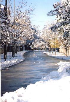 Ifrane, Morocco. First time I ever saw snow as a child was on a trip to Ifrane, in the Middle Atlas of Morocco