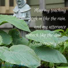 May my teaching soak in like the rain, and my utterance drench like the dew. - Deuteronomy 32:2