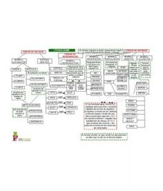 MAPA CONCEPTUAL COS HUMÀ. Són mapes per ajudar els mestres a tenir els continguts organitzats i estructurats.