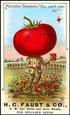"""Tomato Seeds Grand Sales: Vintage Reproductions: Seed Packet Tomato Man - """"Monster Tomatoe;-'You can't can me!'"""""""