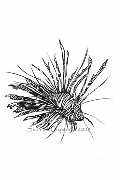 Lionfish Print in Pen and Ink 8x10