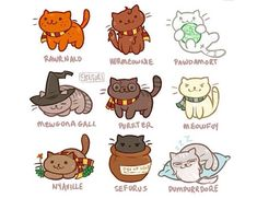 Harry Potter, Hermione Granger, Ron Weasley, Draco Malfoy, Dumbledore, Neville Longbottom, Minvera, all turned to cats