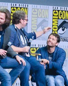 The true fact: Misha is a kitten