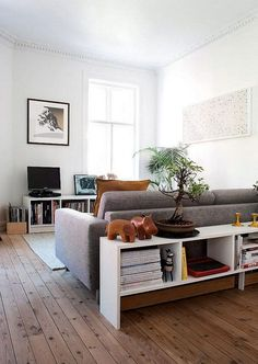 Sofa and Bookcase Creates a Room Within a Room.