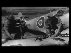 Wings Over Italy Dogfights Gun Camera & Ground Attack   World War II Social Place