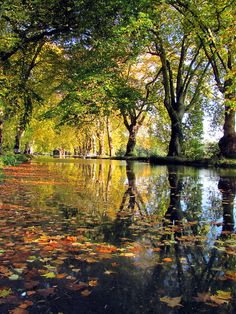 Autumn walk, Dole city water, France