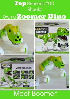 Why you should own the Zoomer Interactive Dino, Boomer: The Hottest Toy of the Year! #ZoomerDino #ad