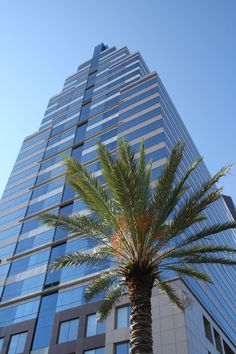 Jacksonville, FL - SunTrust Building, worked in this building 2 years.