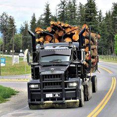 Kenworth custom T-800 tri drive loaded with logs