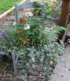 chair with plants