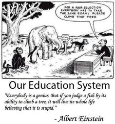 Education needs to be viewed critically just as much as subjects that directly affect health care.