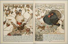 Het leelijke jonge eendje, pag. 12-3: naar het sprookje / van H. C. Andersen ; geteekend en gelithographeerd door T. van Hoytema,Amsterdam, C.M. van Gogh, 1893