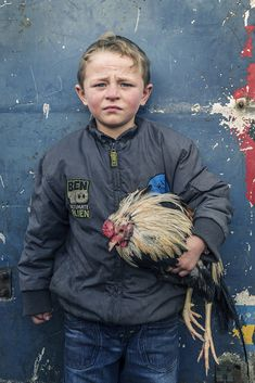 Pa with Rooster, Irish Traveller, roadside campsite, Tipperary, Ireland 2019 Puck Fair, Colour Images, Campsite, Savannah Chat, Joseph, Rooster, Irish, Culture, Portrait