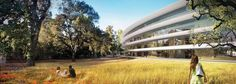 Apple Campus 2 project, Cupertino, 2012 - Foster + Partners