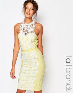 Paper+Dolls+Tall+Lace+Insert+Pencil+Dress