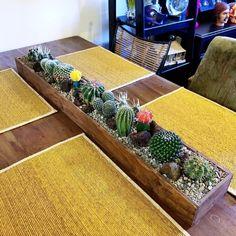 indoor garden Plants, Cactus decor, Ca - gardencare Succulent Terrarium, Cacti And Succulents, Planting Succulents, Planting Flowers, Terrarium Wedding, Succulent Centerpieces, Garden Terrarium, Decoration Cactus, Decoration Plante